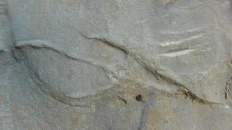 Bosnian Rosetta Stone B (detail)