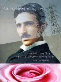 San o električnoj ženi poster