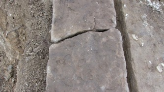 Spontaneous Archaeology 1