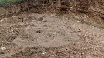 Spontaneous Archaeology 11