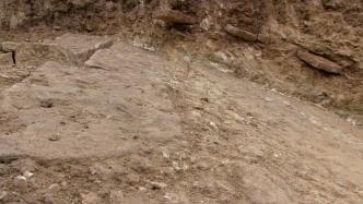 Spontaneous Archaeology 12
