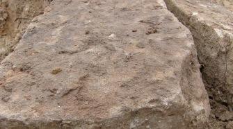 Spontaneous Archaeology 3