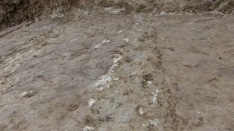 Spontaneous Archaeology 5