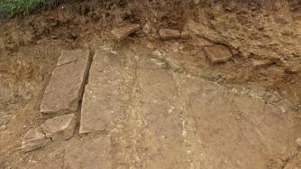 Spontaneous Archaeology 9