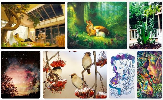 animals plants stars beauty love Screen Shot 2019-04-16 at 2.05.15 PM copy