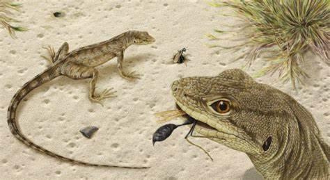 reptiles evolving